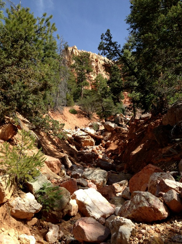 One of the washes we climbed through, Dixie National Forest, Utah
