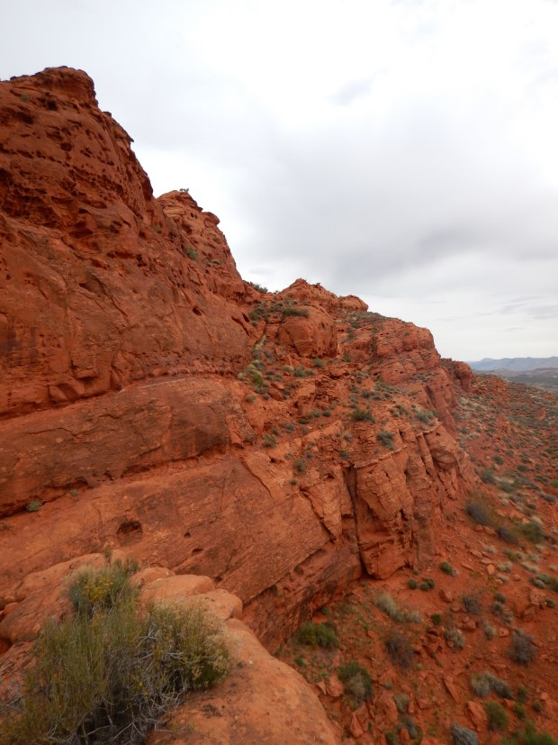 Looking along the reef while climbing, Red Cliffs National Conservation Area, Utah