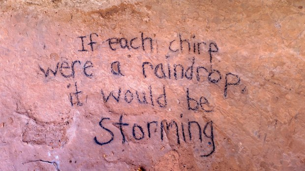 Charcoal message on canyon wall near a camp, Spring Creek Canyon, Utah