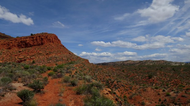 Red Cliffs Conservation Area, Utah