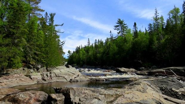 Near the trailhead, Pinguisibi Trail, Lake Superior Provincial Park, Ontario, Canada