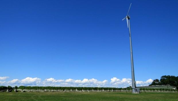 Wind-powered vineyard, Long Island