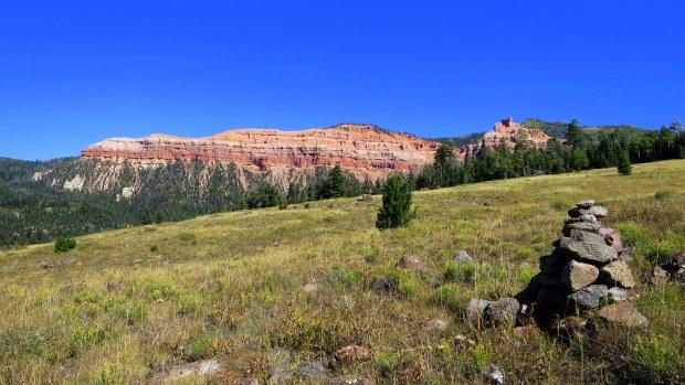 Meadow on Rattlesnake Trail, Ashdown Gorge Wilderness, Dixie National Forest, Utah