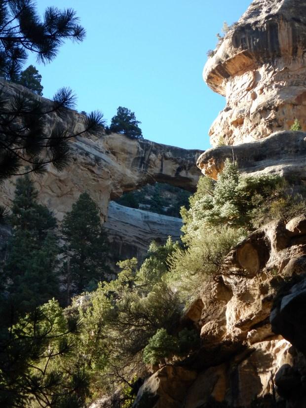 Flanigan's Arch, Ashdown Gorge Wilderness, Dixie National Forest, Utah