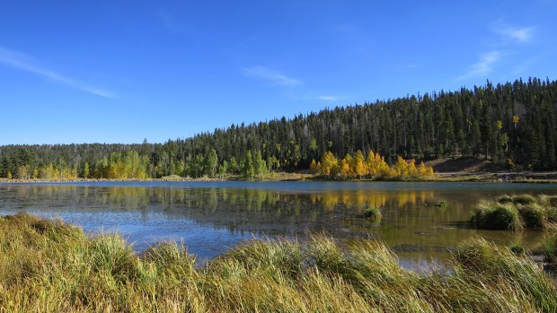 Duck Lake, Dixie National Forest, Utah