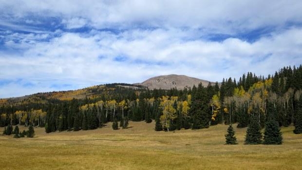 Big John Flat, Fishlake Mountains National Forest, Utah