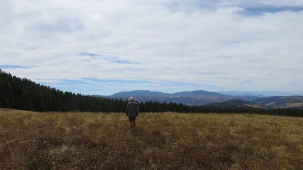 Tom walking near Big John Flat, Fishlake Mountains National Forest, Utah