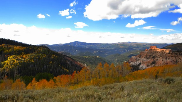 Bear Flat, Dixie National Forest, Utah