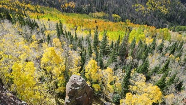 Looking down near Marathon Trail, Dixie National Forest, Utah