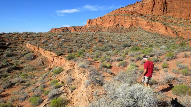 Tom and Abby walking, Red Cliffs National Conservation Area, Utah