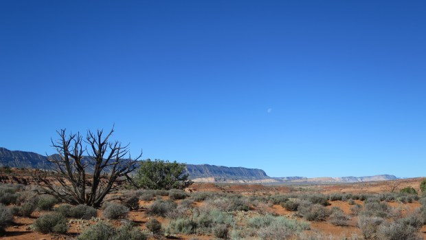 View along Hole-in-the-Rock Road, Grand Staircase-Escalante National Monument, Utah