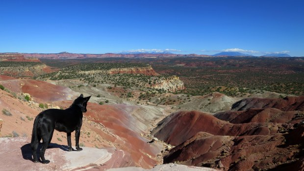 Overlook on the Burr Trail, Grand Staircase-Escalante National Monument, Utah