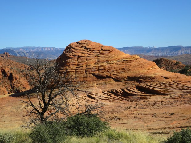 Petrified dunes, Red Cliffs National Conservation Area, Utah