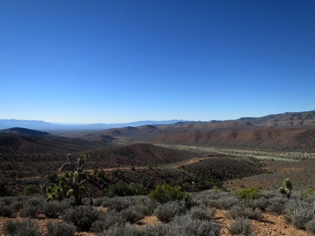 Desert, Spring Mountains National Recreation Area, Humboldt-Toynbee National Forest, Nevada