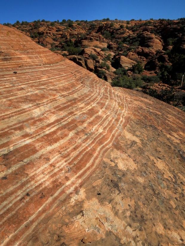 Striped sandstone, Gila Trail, Snow Canyon State Park, Utah