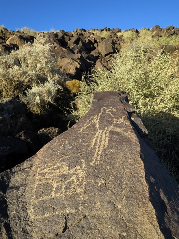 Macaw Trail, Boca Negra Canyon, Petroglyph National Monument, New Mexico