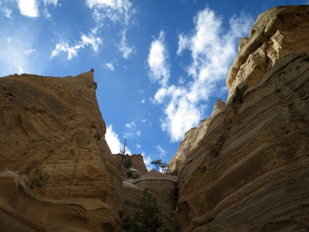 Back through the Canyon Trail, Kasha-Katuwe Tent Rocks National Monument, New Mexico
