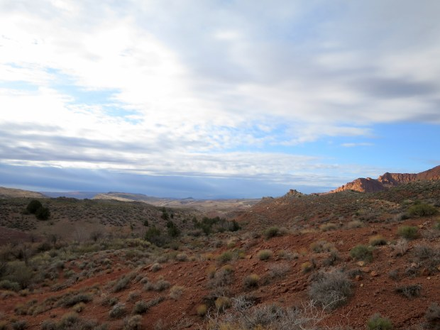 Looking south, Red Cliffs National Conservation Area, Utah