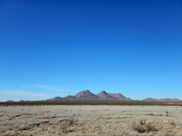 Afternoon dogwalk, Las Cruces, New Mexico