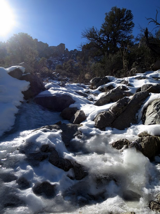 Iced-over stream, Pine Tree Trail, Aguirre Springs National Recreation Area, New Mexico