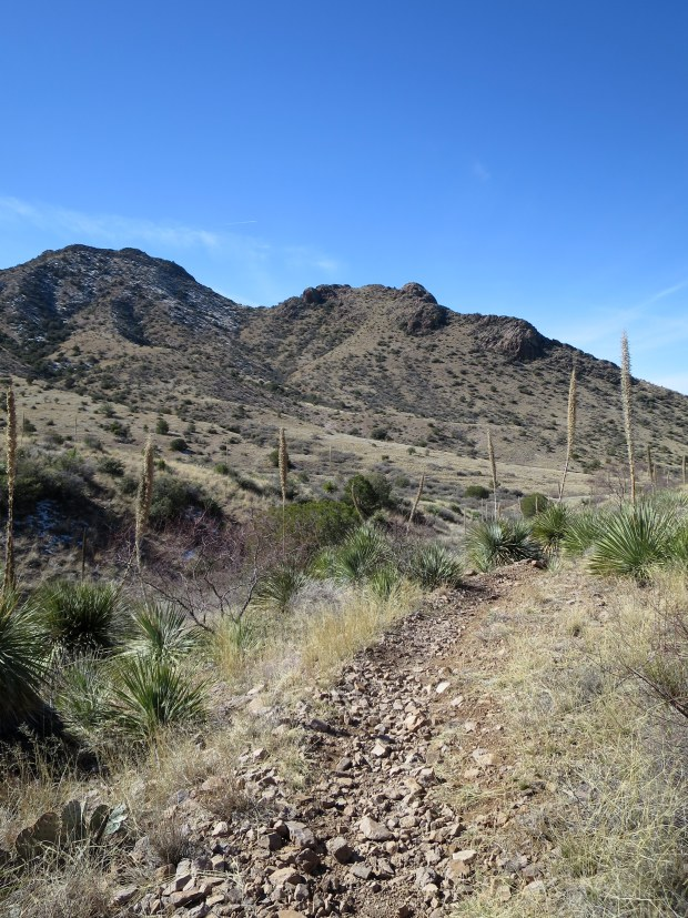 Rocky trail, Soledad Canyon Recreation Area, New Mexico