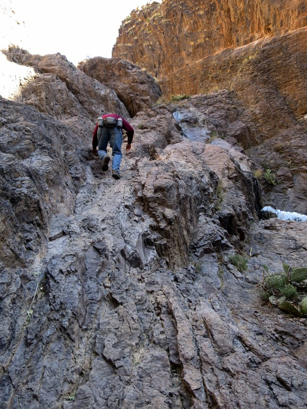 Tom climbing up the side of the waterfall, Bar Canyon, Soledad Canyon Recreation Area, New Mexico