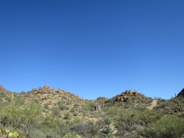 Tucson Mountain Park, Tucson, Arizona