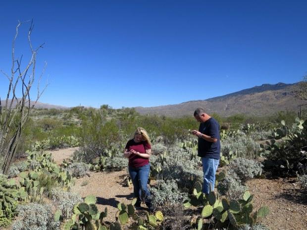 Tina and Kurt looking at rocks, Saguaro National Park, Tucson, Arizona