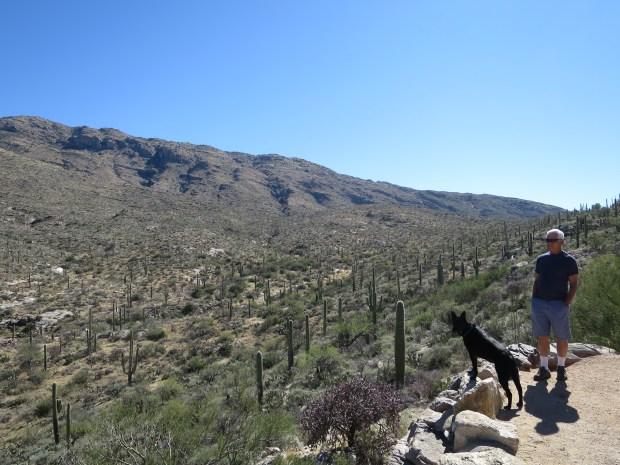 Abby and Tom, Saguaro National Park, Tucson, Arizona