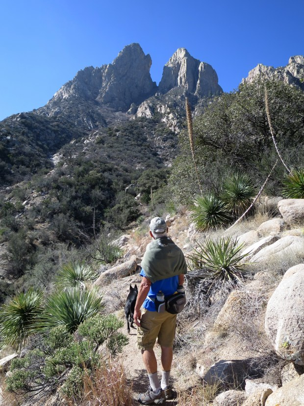 The Rabbit Ears, Baylor Pass Trail, Organ Mountain-Desert Peaks National Monument, New Mexico