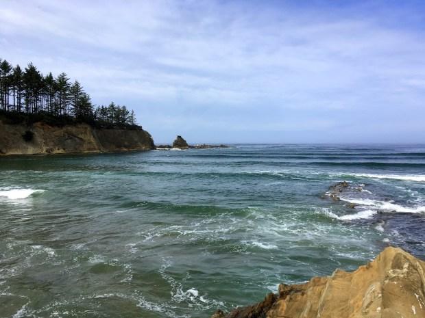 2016-09-08-oregon_redwoods_iphone-124