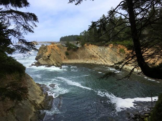 2016-09-08-oregon_redwoods_iphone-131