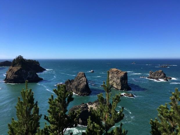 2016-09-08-oregon_redwoods_iphone-226