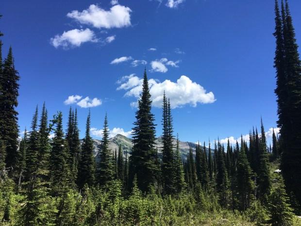 Banff_Jasper_iphone 2524