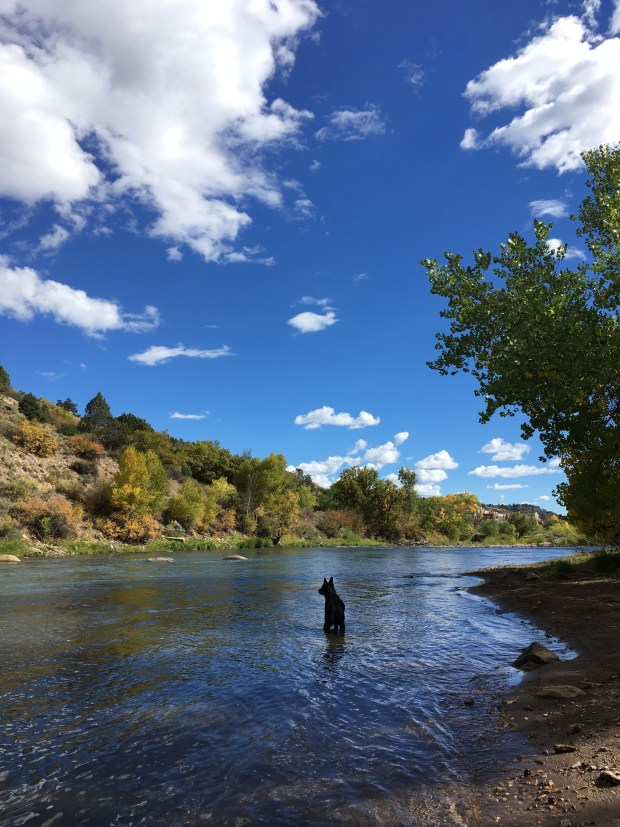 Abby on the Animas River Trail