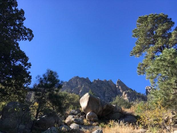 pinetreetrail_iphone-031