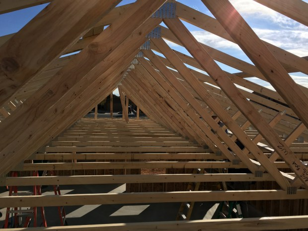 View down the trusses