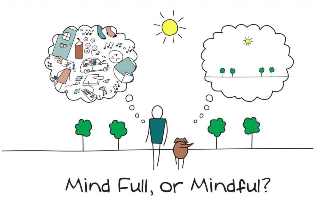 méditation de pleine conscience