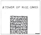 Collectivenouns_ricecakesNEW