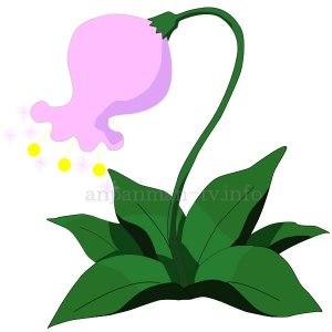 勇気の花 画像 イラスト