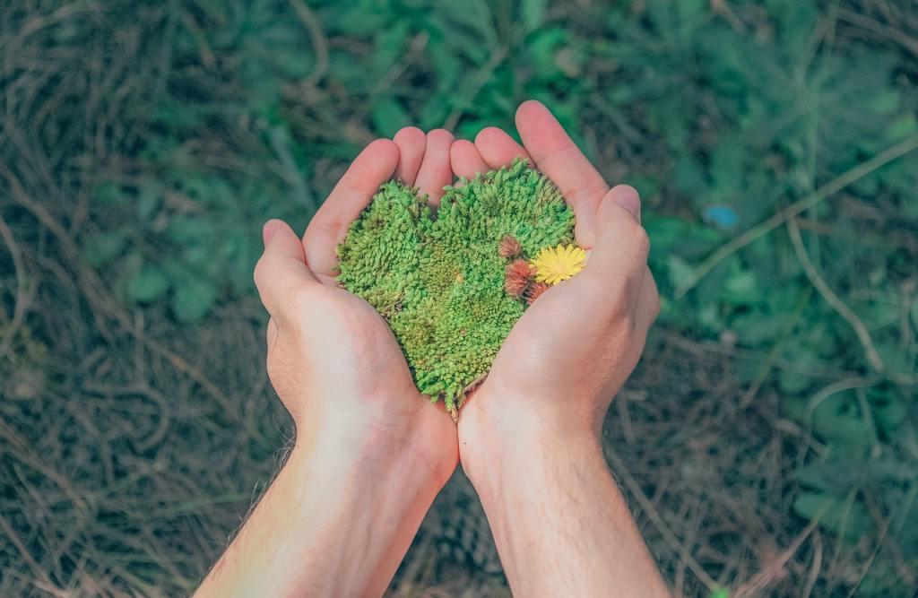 Mani che tengono un pezzo di muschio a forma di cuore - Investimenti sostenibili ESG