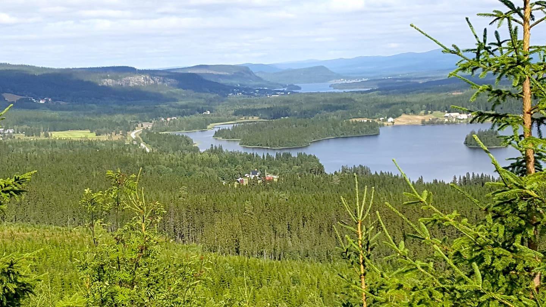 Vy över Stångviken, Skärvången, Norra Skärvången och ända till Norge. Foto © Reidun Sjövold.