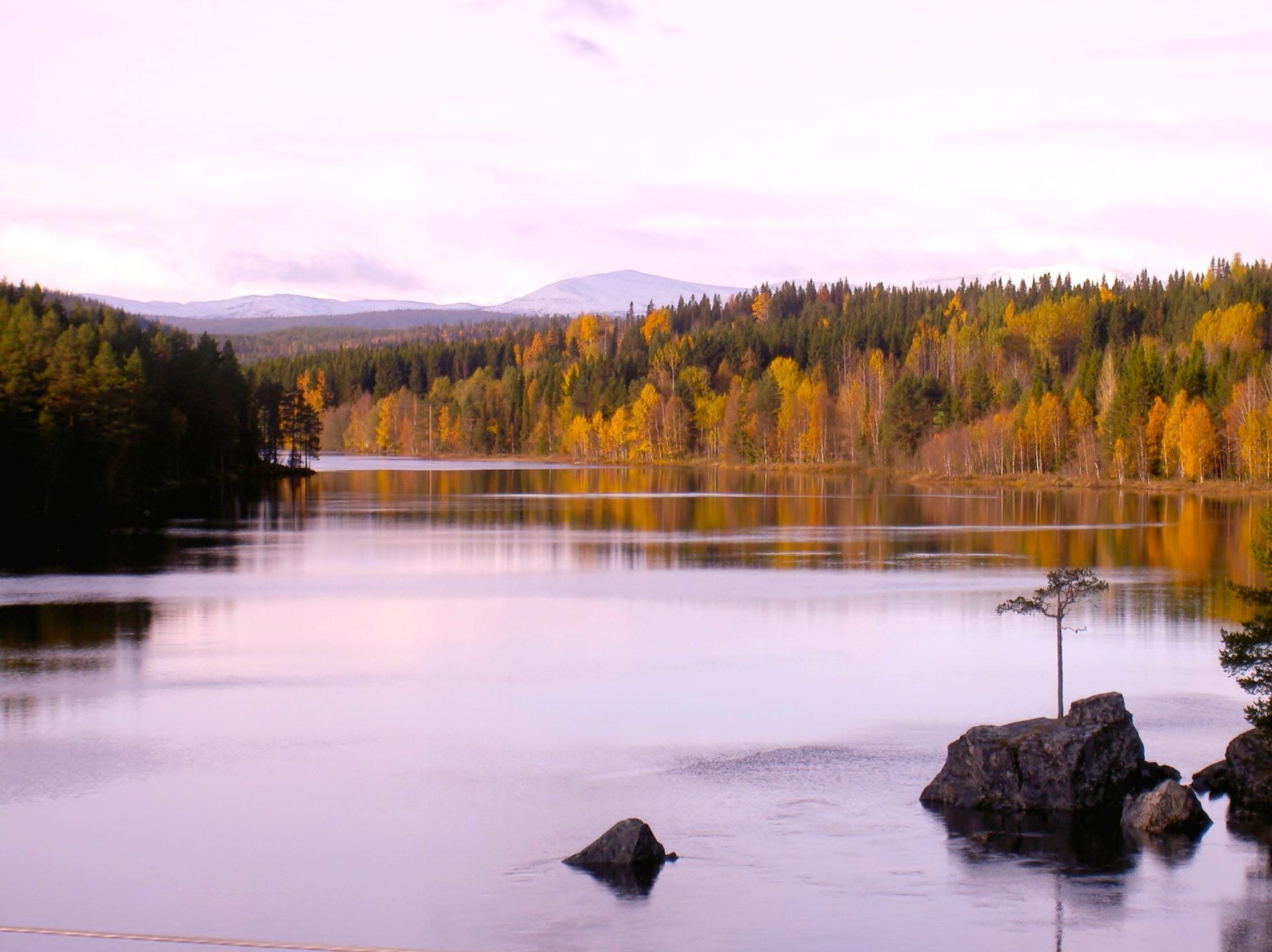Stensjöfjällen i vy från Rötviken. Foto © Maritha-Grelsson