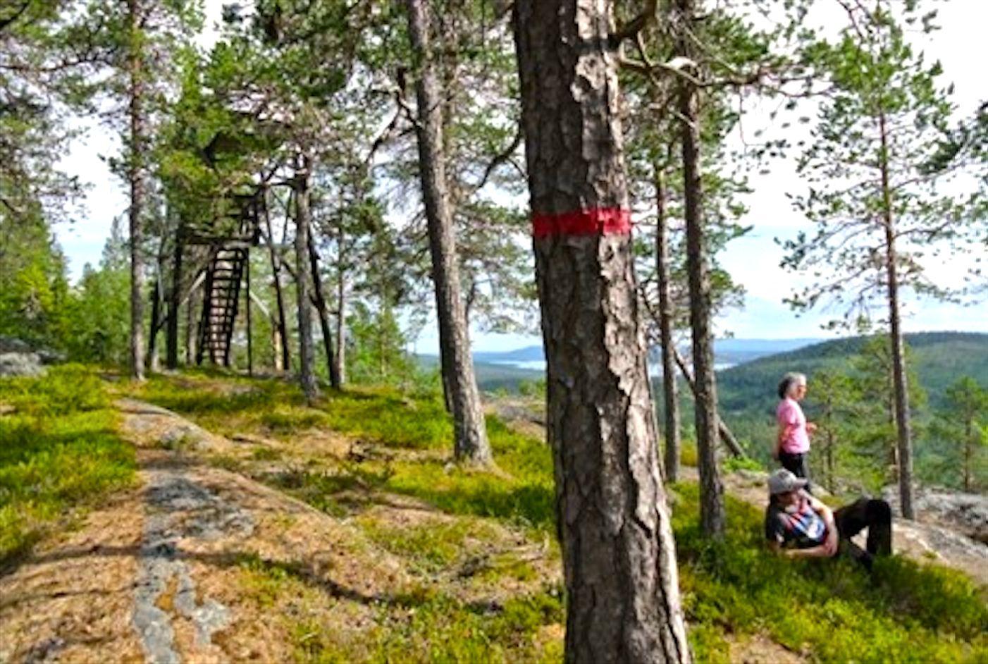 Markerad led och fin utsikt längs vandringsleden Strömhöjden. Foto © Ansättfjällen.