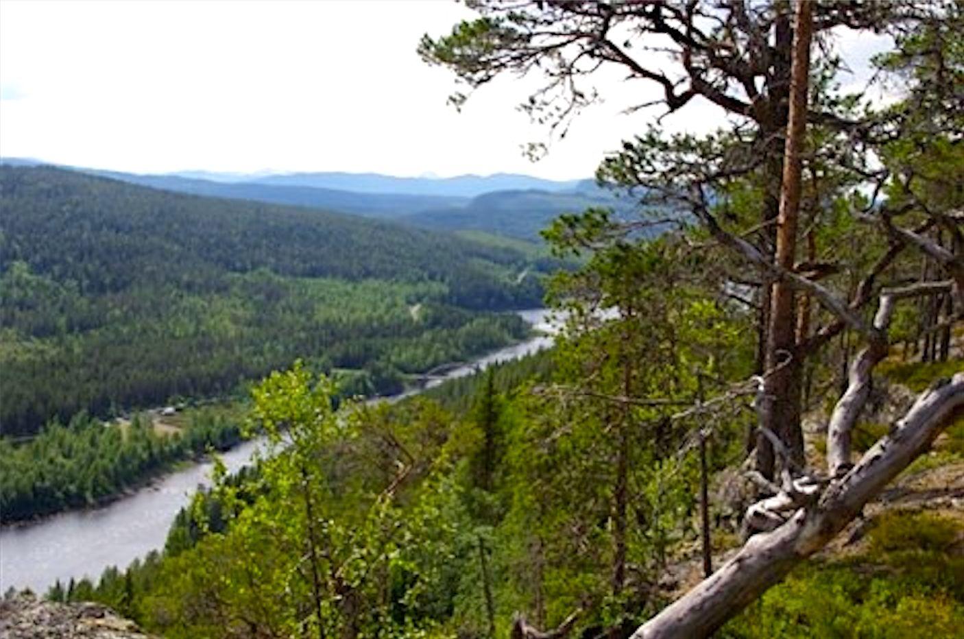 Utsikt från vandringsleden Strömhöjden. Foto © Ansättfjällen.