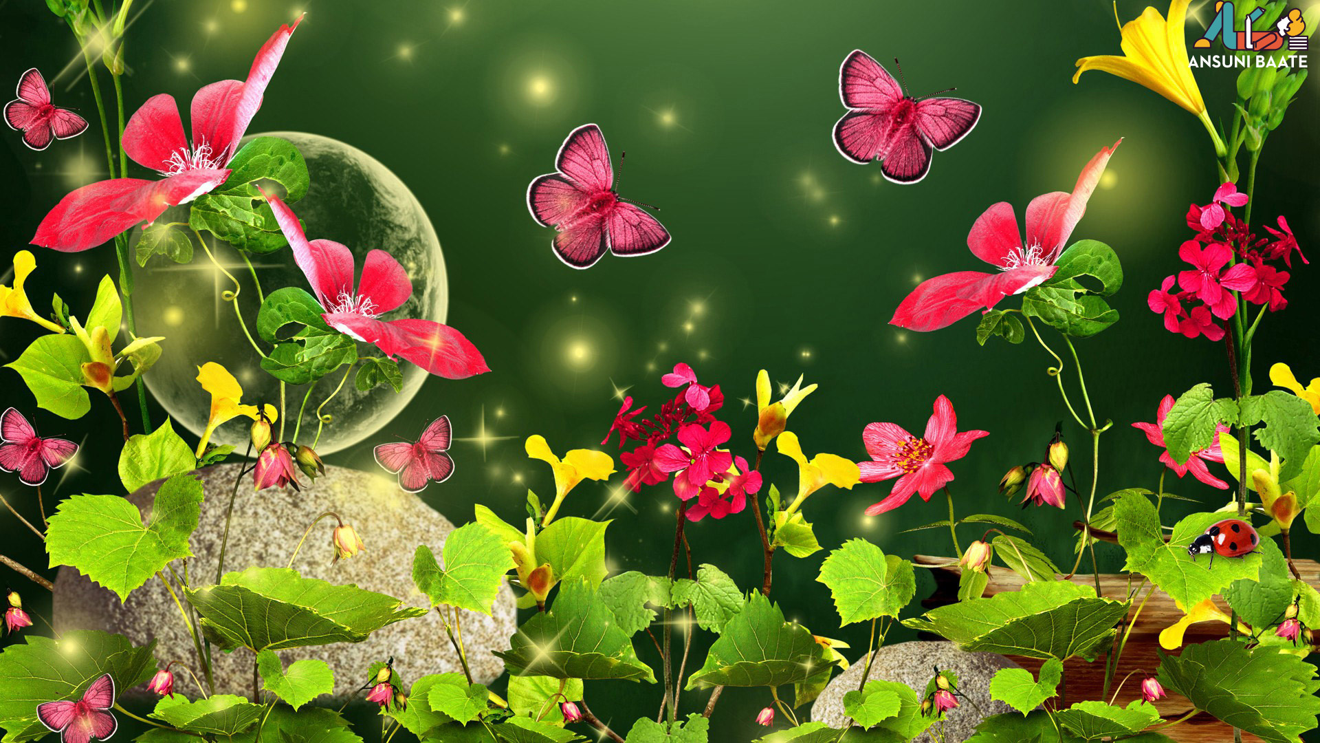 Butterfly Photos Hd Butterfly Gallery Free Download