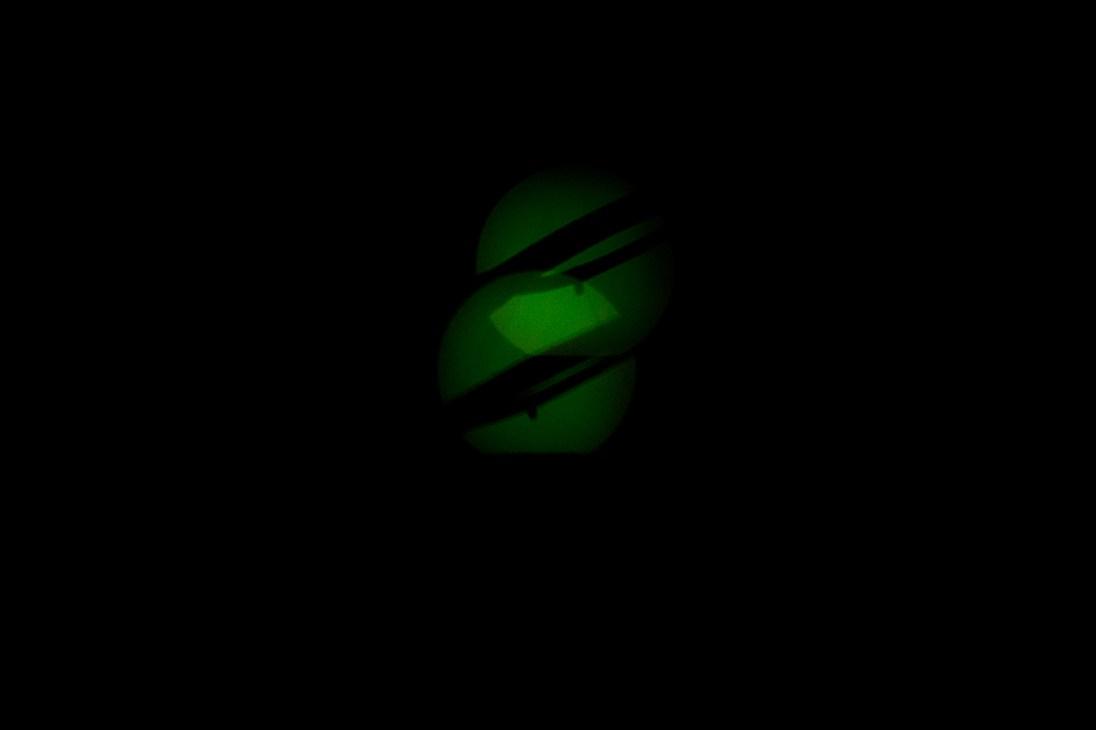 Glühwürmchen (4)