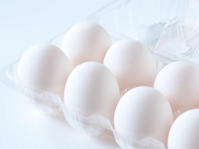 卵のパックをリメイクして工作を楽しもう!
