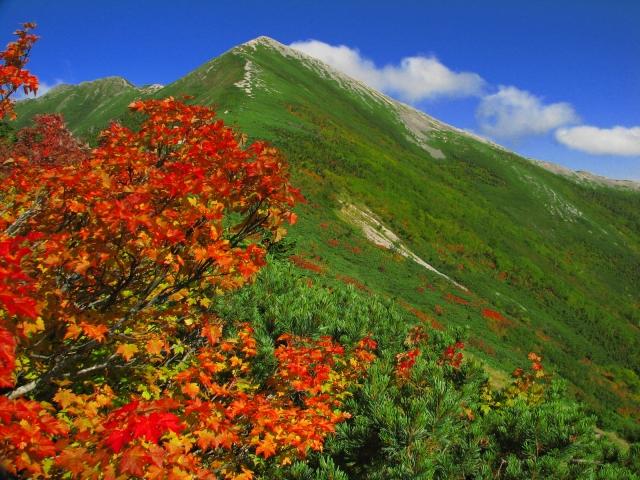 紅葉の秋に! 登山初心者おすすめの山!