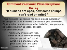 If humans are apes, how come chimps can't read or write?